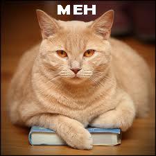 Cat snubbing a bad book.